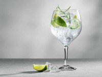 Джин тоник — пропорции, состав, секреты приготовления и выбор лучших ингредиентов для напитка (75 фото)