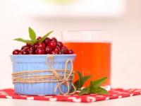 Клюквенный сок: простые пошаговые инструкции приготовления, польза, вред, вкусные рецепты которые можно приготовить в домашних условиях (115 фото и видео)
