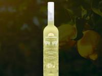 Лимонная водка — технология приготовления. Рецепты в домашних условиях: из спирта, самогона, с сахарным сиропом. Готовим лимонную водку в домашних условиях