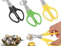 Ножницы для яиц — зачем нужны и советы как применять их правильно (85 фото + видео)